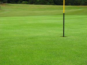Vrtni traktor se odlično obnese tudi pri zahtevnejših nalogah, recimo vzdrževanju golfišč